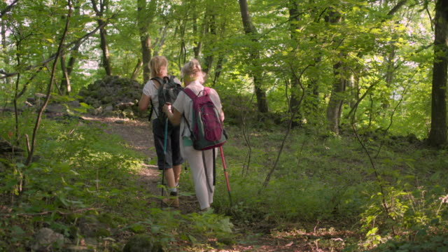 two senior women hikers walking the path in woodland - effortless stock videos & royalty-free footage