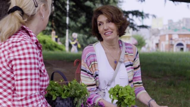 食料品の買い物後にベンチに座っている二人のシニア女性 - 野菜点の映像素材/bロール