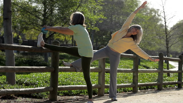 WS Two senior women stretching along fence / Los Angeles, California, USA