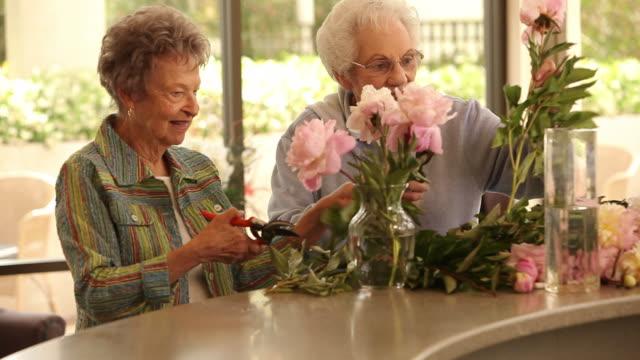 """ms pan two seniors citizens arranging flowers in flower pot / laguna woods, ca, united states "" - 談笑する点の映像素材/bロール"