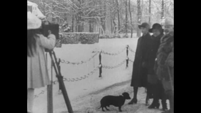 Two shots of daughter of Hermine shooting footage with movie camera of Wilhelm Hermine and another daughter of Hermine two small dogs moving around...