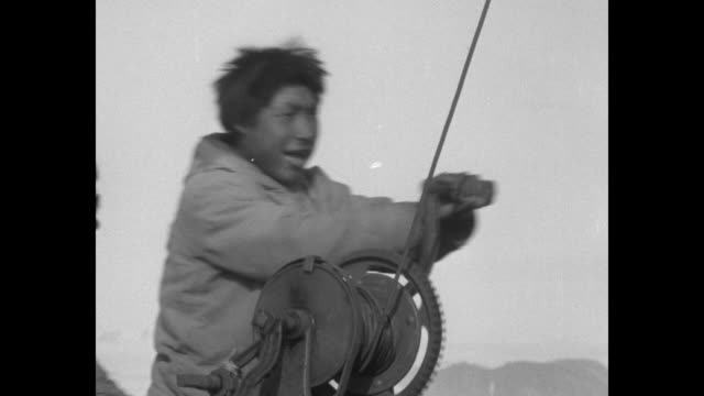 two shots of men riding dogsleds pulled by dogs a cross snowy landscape / close shot of dogs pulling sled / two men carrying metal tub filled with... - inuit bildbanksvideor och videomaterial från bakom kulisserna