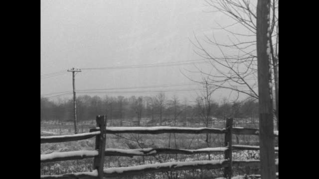 two shots of snow-covered fence in snowy landscape / indistinct shot / note: exact year not known; documentation incomplete - fence stock videos & royalty-free footage