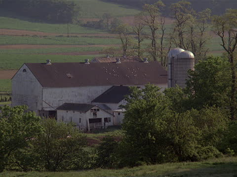 stockvideo's en b-roll-footage met two silos stand near a huge barn on an amish farm. - amish
