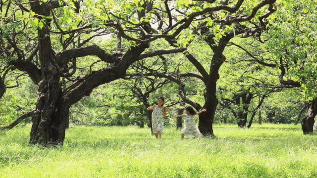 WS Two sisters (4-5,8-9) frisking in forest / Koganei, Tokyo, Japan