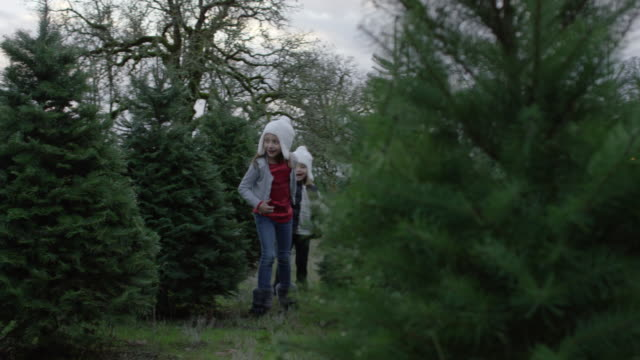 two sisters holding hands while running through a christmas tree farm - gente comune video stock e b–roll