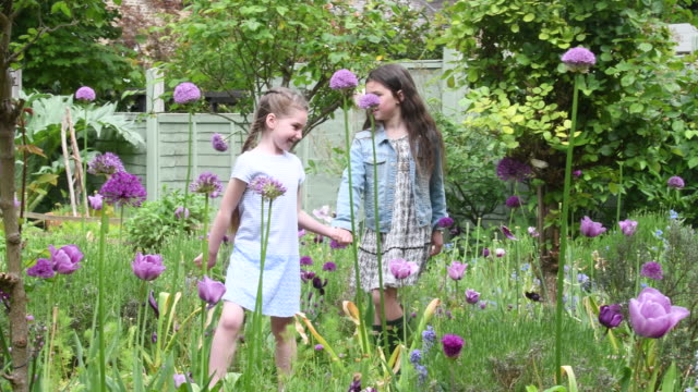 two sisters in garden looking at flowers and holding hands - gazebo stock videos and b-roll footage