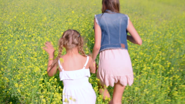 ms pov slo mo two sisters running in beautiful mustard field / thousand oaks, california, united states - mustard stock videos and b-roll footage