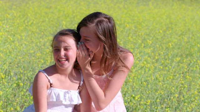 ms slo mo two sisters sitting in beautiful mustard field telling secret and laughing / thousand oaks, california, united states - whispering stock videos and b-roll footage