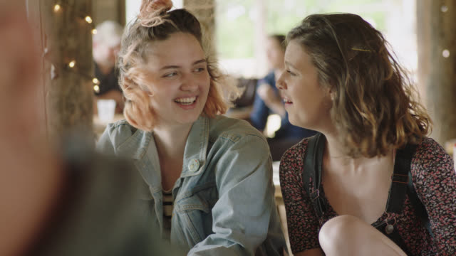 ms. two sisters talk and laugh and make animated hand gestures at windy picnic table. - picnic table stock videos and b-roll footage