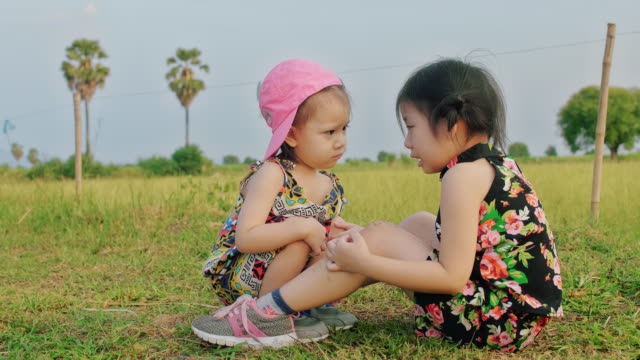 two sisters. younger sister takes care of older sister in a country farm - family with two children stock videos & royalty-free footage