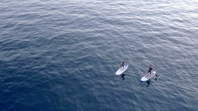 aerial two stand up paddle boarders paddling across a calm sea - pagaiare video stock e b–roll