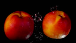 Two sweet ripe peaches collide on black background
