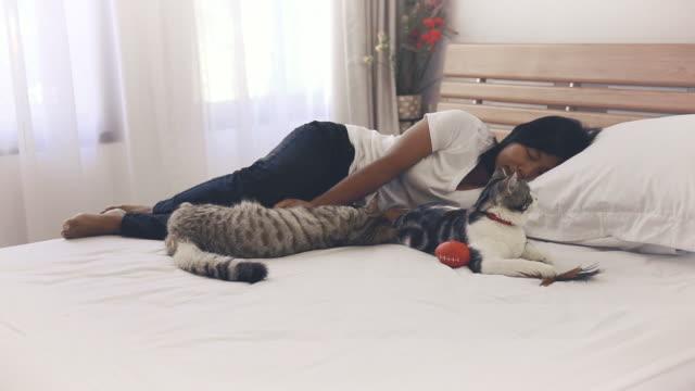 zwei gestromte katzen schlafen mit frau in gemütlichen weißen schlafzimmer interieur - nickerchen stock-videos und b-roll-filmmaterial