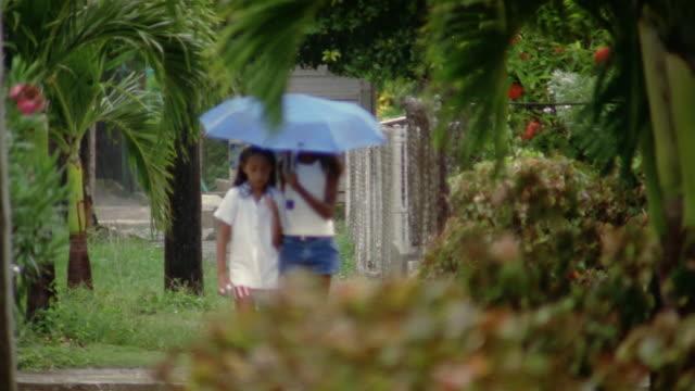 slo mo, ms, focusing, two teenage girls (13-14, 14-15) walking on sidewalk in rain, havana, cuba  - fan palm tree stock videos & royalty-free footage
