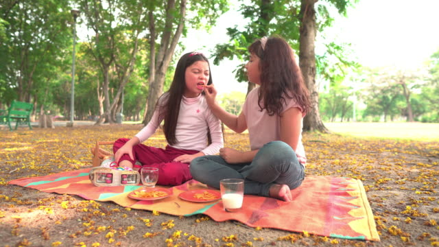 two teenager girls having a picnic together in a public park in weekend - only teenage girls stock videos & royalty-free footage