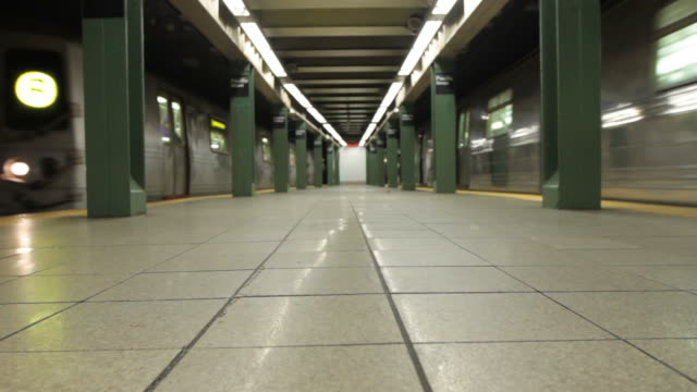 Two trains entering subway station at Atlantic-Pacific