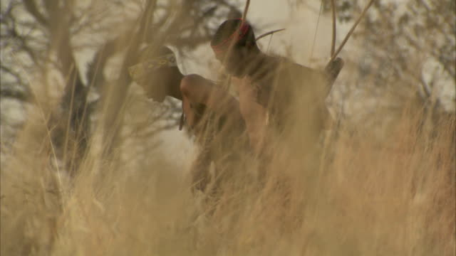 two tribesmen tracking animals in the bush. available in hd - hunting stock videos & royalty-free footage