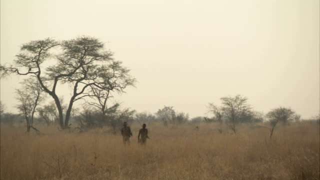 Two tribesmen walk through long grass. Available in HD