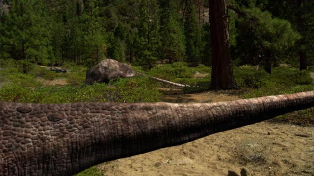 CGI, MS, TU, Two Tyrannosaurus rexes following  Brontosaurs