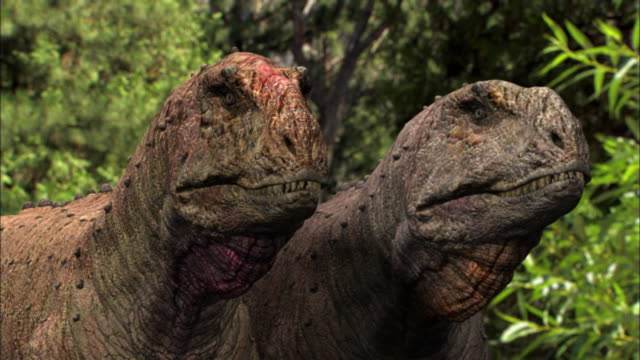 CGI, CU, Two Tyrannosaurus rexes, headshot