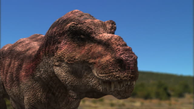 CGI, CU, R/F, Two Tyrannosaurus rexes on field, headshot