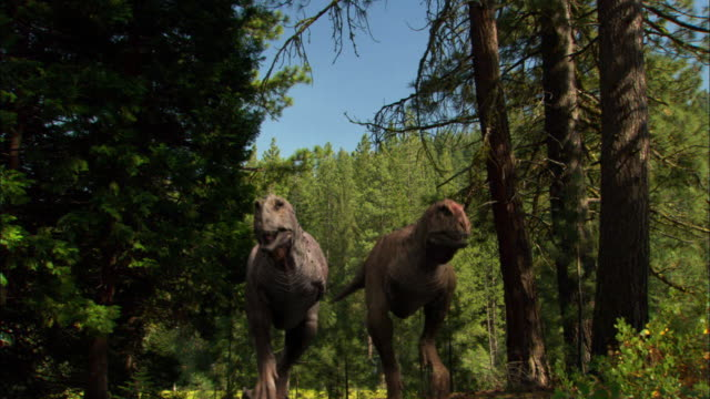 cgi, ms, cu, two tyrannosaurus rexes with babies walking through forest - halbnahe einstellung stock-videos und b-roll-filmmaterial
