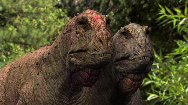 two tyrannosauruses rex watch as a brontosaurus drinks from a stream. - dinosaur stock videos & royalty-free footage