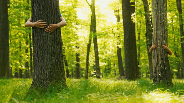 slo mo two unrecognizable boys hugging trees - anonymous activist network stock videos & royalty-free footage