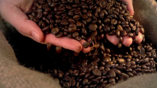 Two videos of checking coffee beans in real slow motion