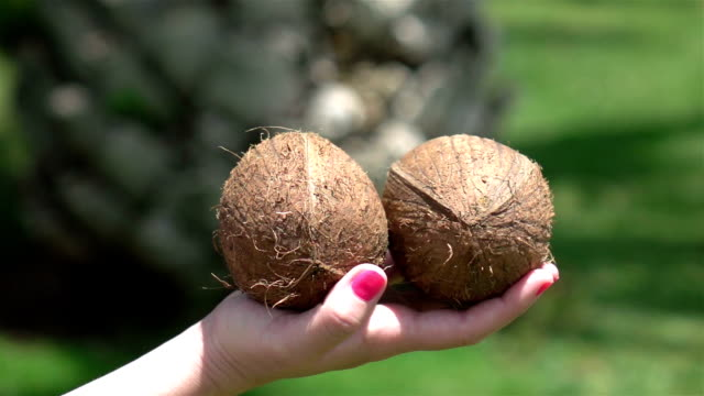 two videos of hands holding coconuts in real slow motion - red nail polish stock videos and b-roll footage