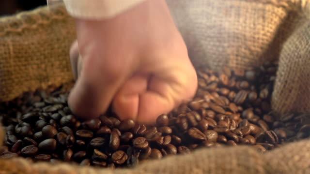 vídeos de stock, filmes e b-roll de dois vídeos de atingir grãos de café em câmera lenta real - batendo com a cabeça na parede