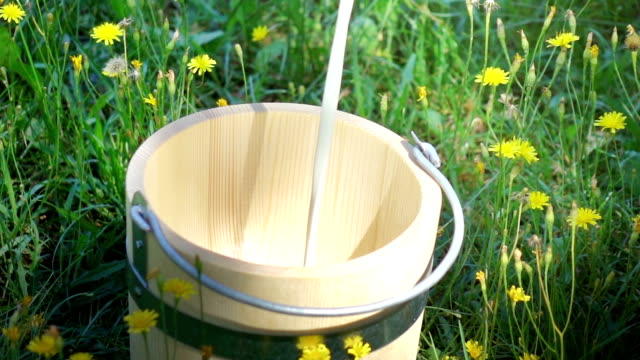 Two videos of pouring milk into wooden bucket-real slow motion