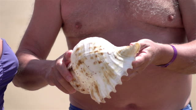 two videos of senior couple on the beach-real slow motion - seashell stock videos & royalty-free footage