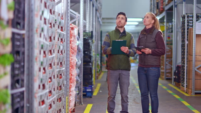 ds two warehouse employees walking in the aisle and checking the inventory - deposito video stock e b–roll