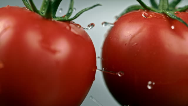 slo mo two wet tomatoes crash at each other - tomato stock videos & royalty-free footage