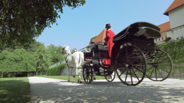 ds two white horses pulling a carriage by a castle - two animals stock videos and b-roll footage