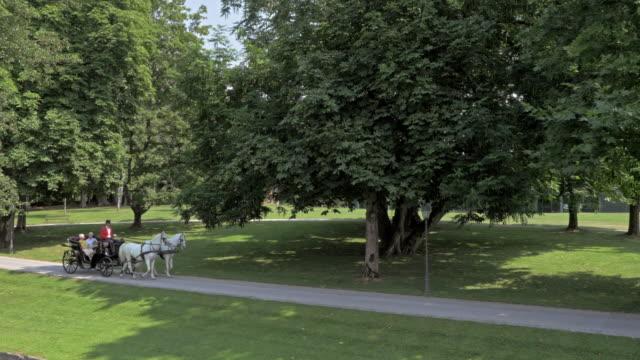 stockvideo's en b-roll-footage met luchtfoto twee witte paarden trekken van een koets door park - paard en wagen