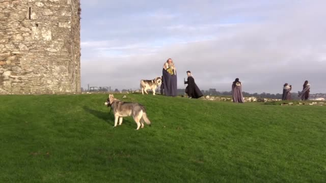Two wolf dogs from Northern Ireland who starred in Game Of Thrones are helping drive a surge in the rare breed's popularity The owner of Odin and...