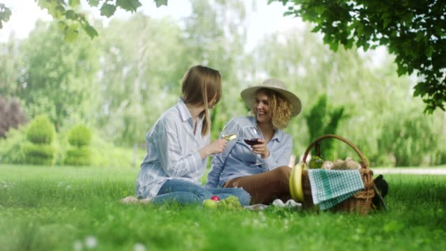 two woman drinking red and white wine on picnic at the public park - hamper stock videos & royalty-free footage