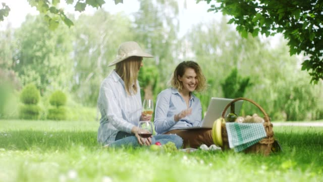 two woman drinking wine and using laptop on picnic at the nature - resting stock videos & royalty-free footage