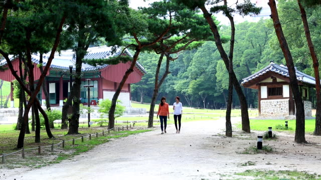 two woman take a walk at the seolleung(tomb of the joseon dynasty king) park in seoul city - gemeinsam gehen stock-videos und b-roll-filmmaterial