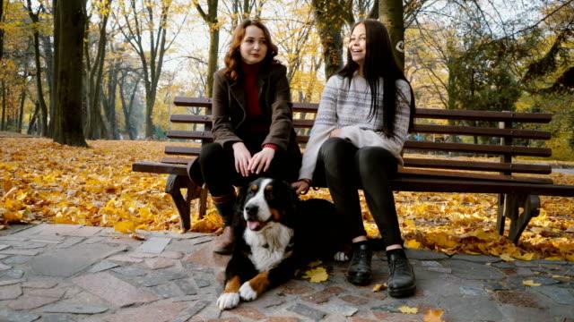 stockvideo's en b-roll-footage met twee vrouwen en hond zit op bankje en praten in park in het najaar - bank zitmeubels