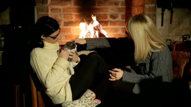 two women and the cat enjoying in winter day at home - slipper stock videos and b-roll footage