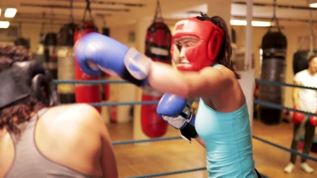 vídeos de stock, filmes e b-roll de duas mulheres boxe - posição de combate