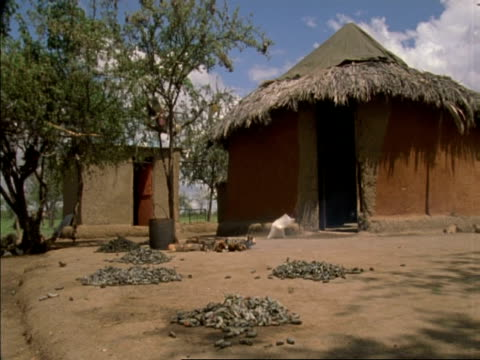 wa two women by hut with caterpillars being dried and cooked, botswana, africa - hut stock videos & royalty-free footage