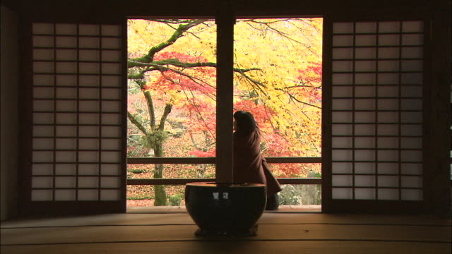 Two women discuss the beauty of autumn colors in the garden of Komyo-zenji Temple.
