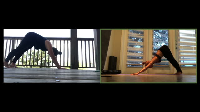 two women do yoga on a video call - sun salutation stock videos & royalty-free footage