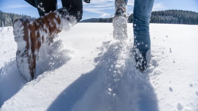 zwei frauen die winterlandschaft erkunden - footpath stock-videos und b-roll-filmmaterial