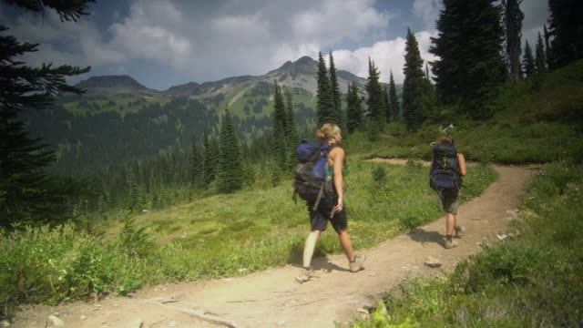 ws pan two women hiking through walking trail, garibaldi provincial park, squamish, british columbia, canada - garibaldi park stock videos & royalty-free footage